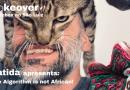 Batida apresenta: The Algorithm is not African!